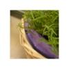 lavender in the basket